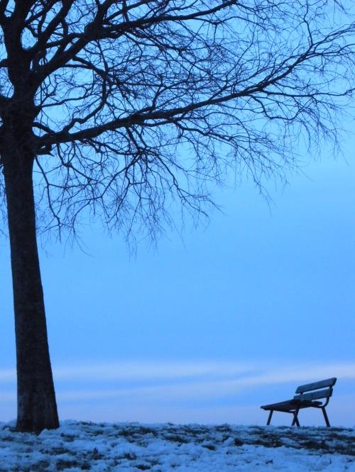 Bleue comme la neige à l'aube sous un ciel gris